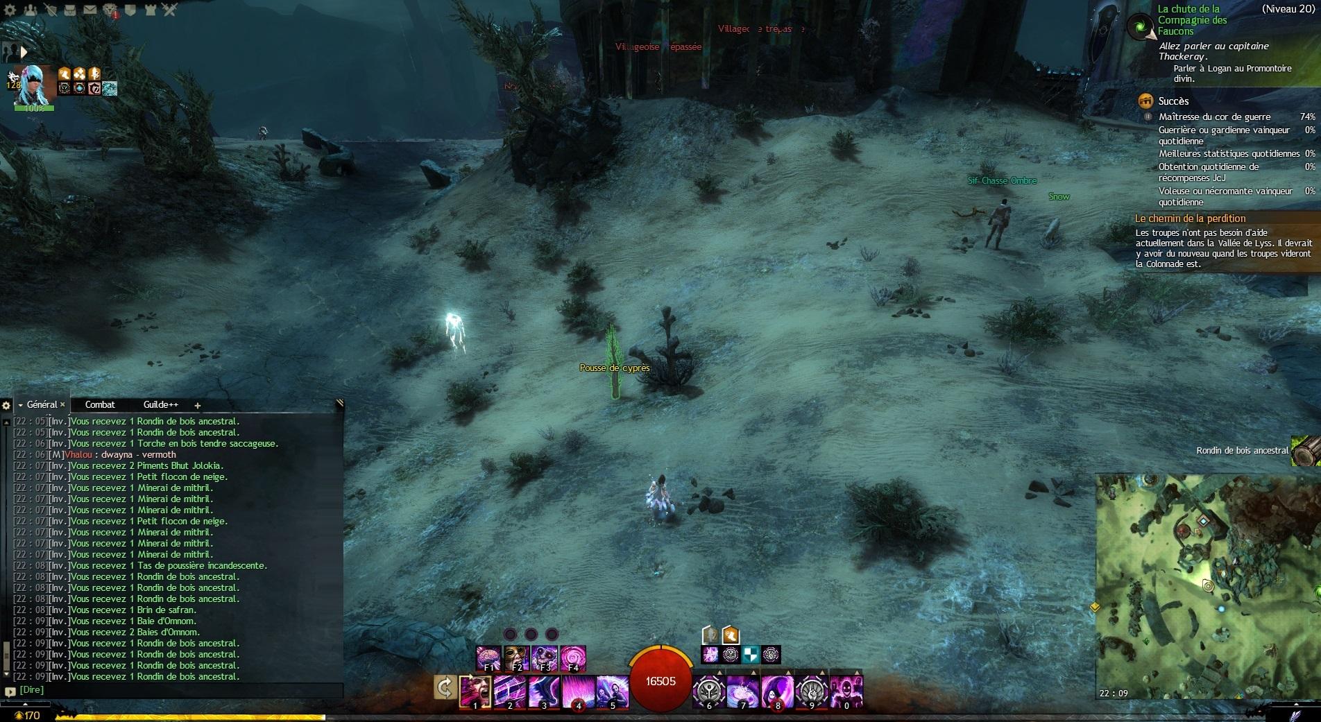 Forum Guild Wars 2
